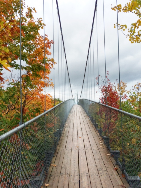 suspension-bridge-collingwood