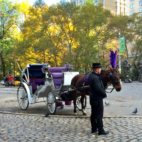 NYC-horse-drawn-carriage