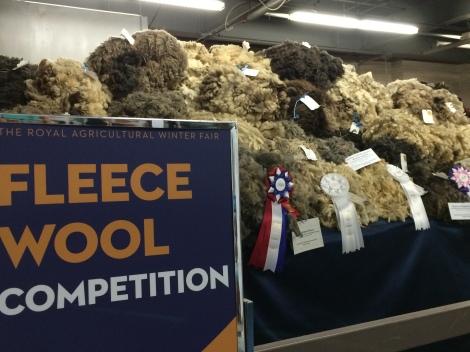 fleece-wool